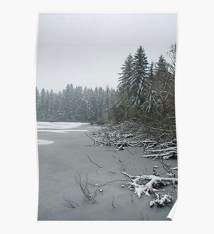 Yellow Lake Freeze Poster