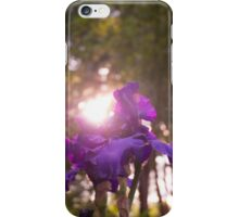Shining Flower iPhone Case/Skin