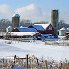 A Hart Farm Winter Day by Geno Rugh