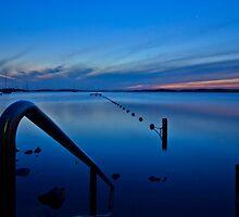 Belmont Blue. by Warren  Patten