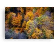 Autumn appearance Canvas Print