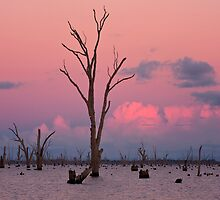 Afterglow - Lake Mulwala by Hans Kawitzki