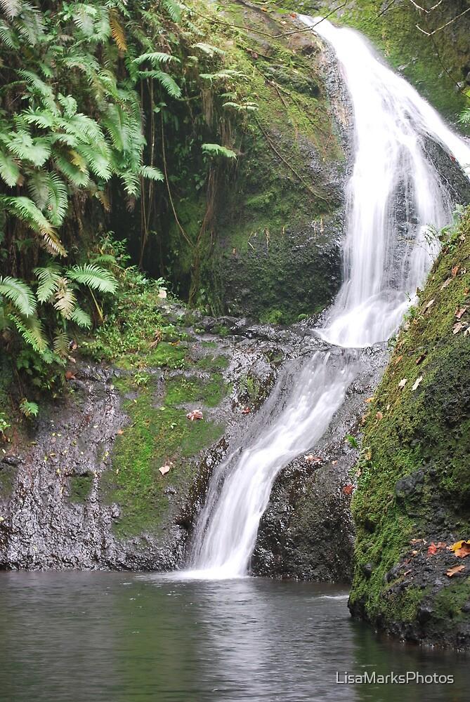 Rarotonga waterfall by LisaMarksPhotos