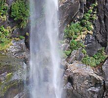 Fiordland waterfall by LisaMarksPhotos