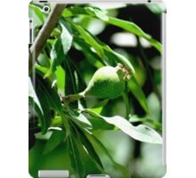 Pear on willow iPad Case/Skin