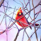 Cardinal  by arline wagner