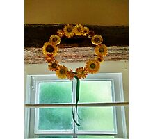 Sunflower Crown - Anne of Cleaves House Photographic Print
