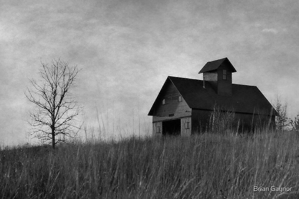 Rural Respite by Brian Gaynor