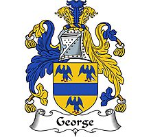 George Coat of Arms / George Family Crest Photographic Print