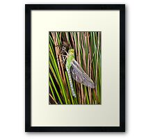 A new dragon waits to fly Framed Print
