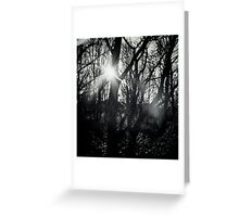 Out of the Dark Greeting Card