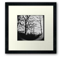 Assimilate Framed Print