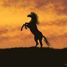 Rearing Stallion at Sunset by SophiaDeLuna