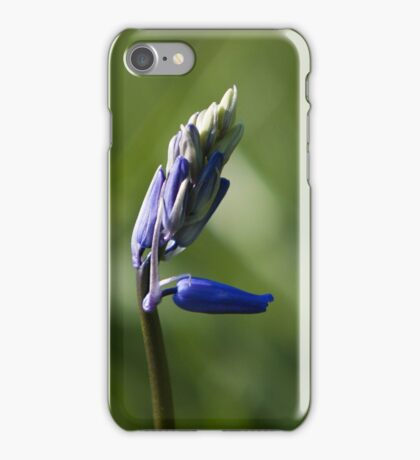 Bluebell I Phone Cover.  iPhone Case/Skin