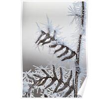Frozen Bracken 2 Poster