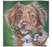 Nova Scotia Duck Tolling Retriever Fine Art Painting Poster