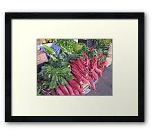 Radish - Rabano Framed Print