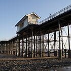 The Pier at Penarth by cofiant