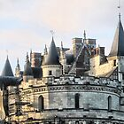 The Chateau Amboise and Points by Larry Lingard-Davis