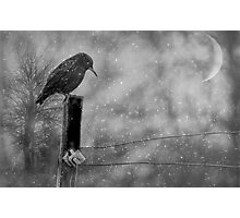 Alone in the Storm Photographic Print