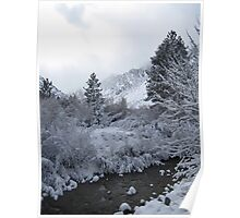 Snow in The Mountains Poster