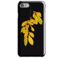 Yellow leaves of autumn iPhone Case/Skin