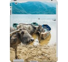Water Buddies iPad Case/Skin