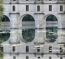 Reflecting On Chenonceau ( 1 ) by Larry Lingard-Davis