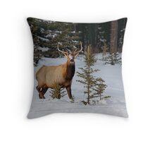 Snowed Nose Throw Pillow