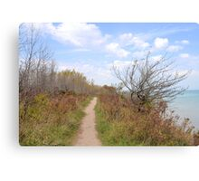 Path Above the Lake Canvas Print