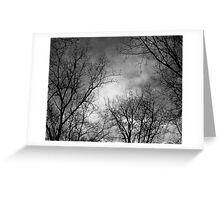 Winter Sky Greeting Card