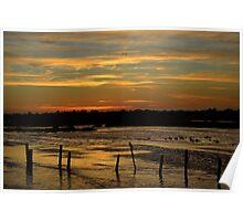 Sunrise @ the Wetlands Poster