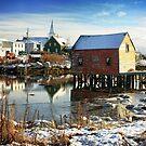Nova Scotia Seasons by Amanda White