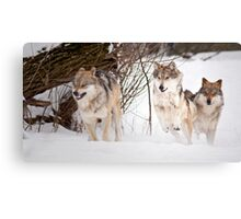 ...The Resolution Canvas Print