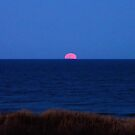 Super Moon Rising 3/19/11 by Sharon Woerner