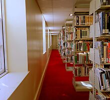 SMALLTOWN USA series -  (Public Library-inside) by ctheworld