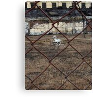 The Silver Hobby Horse - 4 Canvas Print
