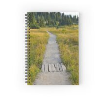 Path Along Mount Rainier Spiral Notebook