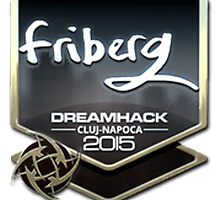 friberg   DH Cluj-Napoca 2015 by SALSAMAN