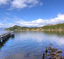 Boat Jetty Maud Island, Marlborough Sounds, New Zealand by nzpixconz