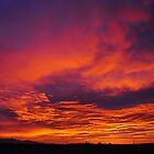 Desert Sunrise by Thomas Eggert
