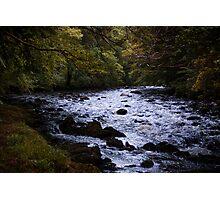 River Dart Photographic Print