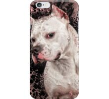 The Lovable Pitty iPhone Case/Skin