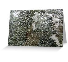 Window Crying & Cold Greeting Card