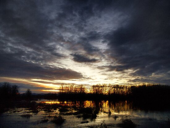 Sunrise Over The Water by Charles & Patricia   Harkins ~ Picture Oregon