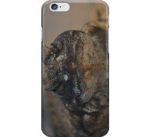 Uromastyx Lizard iPhone Case/Skin