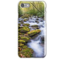 Oconaluftee Cascades - Great Smoky Mountains National Park, North Carolina iPhone Case/Skin