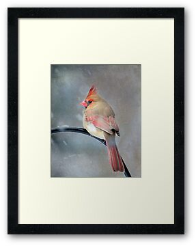 A Wee Bird ~ For Mike Oxley by Renee Blake