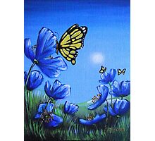 Butterfly on Blue Poppy Photographic Print