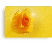 Yellow flame Canvas Print